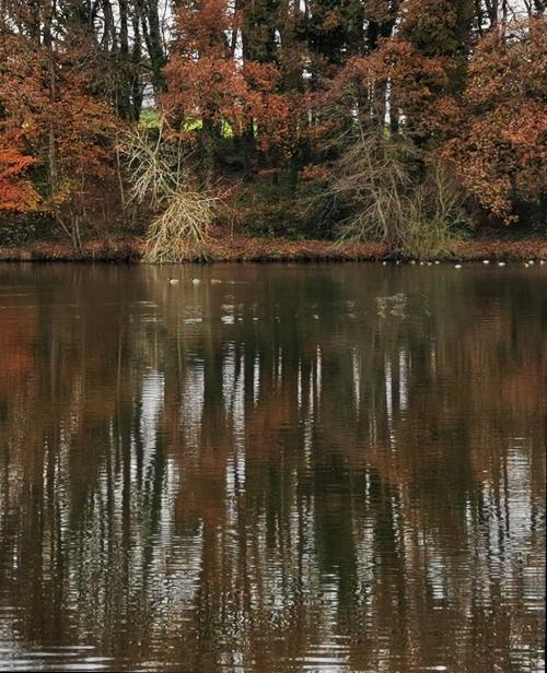 10 - L'étang de Poulloguer (1 vote)