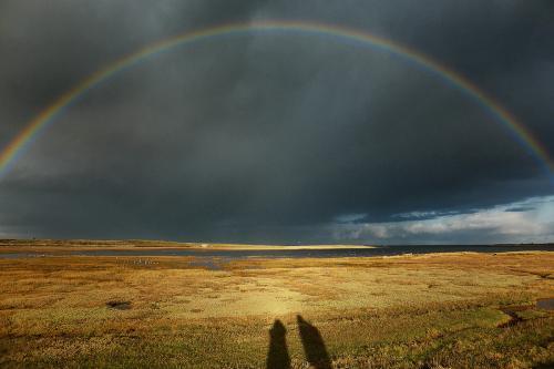 8 - Après la pluie...Le beau temps (2 votes)